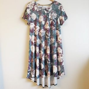 [Nwot] LulaRoe Carly dress
